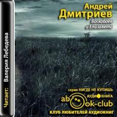 Слушать аудиокнигу Дмитриев Андрей - Воскобоев и Елизавета