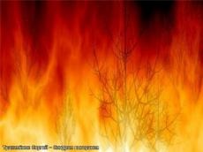 Слушать аудиокнигу Трахимёнок Сергей - Синдром выгорания