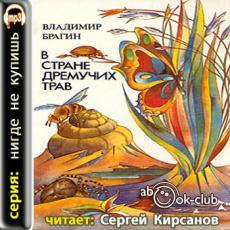 Слушать аудиокнигу Брагин Владимир - В Стране Дремучих Трав
